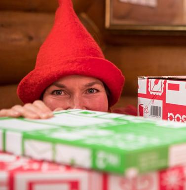 Reader the Letter Elf's